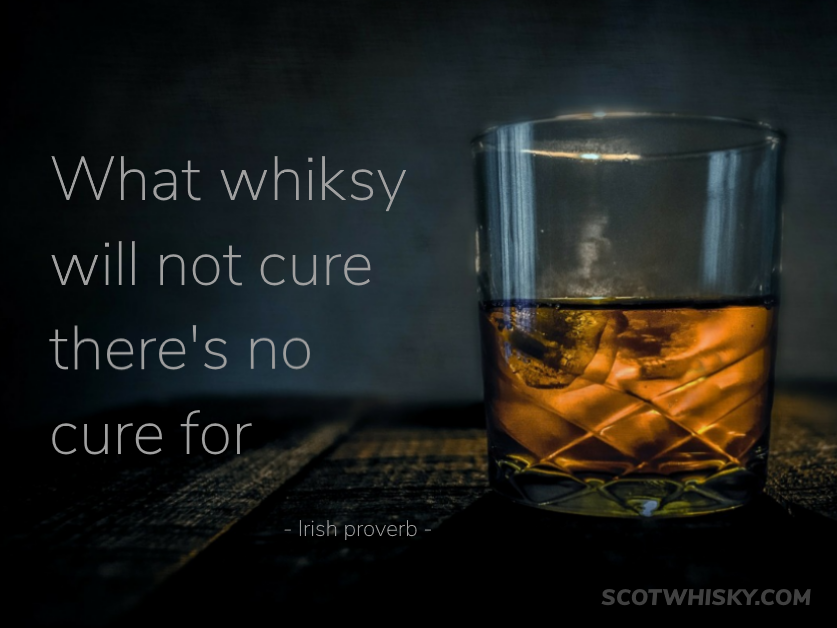 funny short drinking quotes
